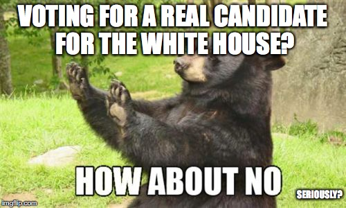 How About No Bear |  VOTING FOR A REAL CANDIDATE FOR THE WHITE HOUSE? SERIOUSLY? | image tagged in memes,how about no bear | made w/ Imgflip meme maker