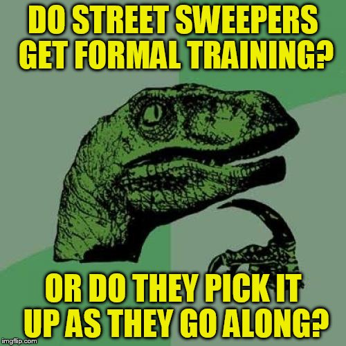 Philosoraptor Meme | DO STREET SWEEPERS GET FORMAL TRAINING? OR DO THEY PICK IT UP AS THEY GO ALONG? | image tagged in memes,philosoraptor | made w/ Imgflip meme maker