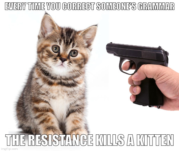 EVERY TIME YOU CORRECT SOMEONE'S GRAMMAR THE RESISTANCE KILLS A KITTEN | made w/ Imgflip meme maker