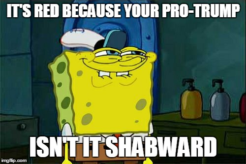 Dont You Squidward Meme | IT'S RED BECAUSE YOUR PRO-TRUMP ISN'T IT SHABWARD | image tagged in memes,dont you squidward | made w/ Imgflip meme maker