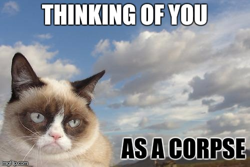Grumpy Cat Sky | THINKING OF YOU AS A CORPSE | image tagged in memes,grumpy cat sky,grumpy cat | made w/ Imgflip meme maker