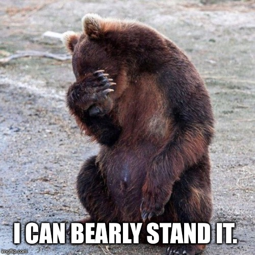 I CAN BEARLY STAND IT. | made w/ Imgflip meme maker