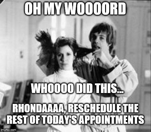 OH MY WOOOORD WHOOOO DID THIS... RHONDAAAA, RESCHEDULE THE REST OF TODAY'S APPOINTMENTS | made w/ Imgflip meme maker