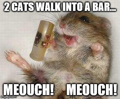 A bad pun version of one of my favorite jokes.  | 2 CATS WALK INTO A BAR... MEOUCH!     MEOUCH! | image tagged in memes,bad pun mouse | made w/ Imgflip meme maker