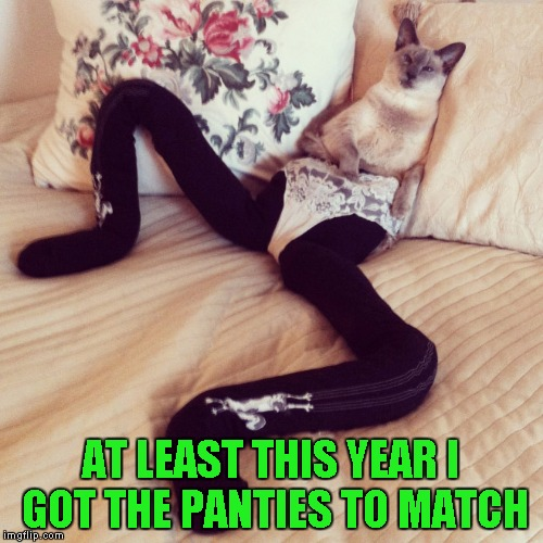 AT LEAST THIS YEAR I GOT THE PANTIES TO MATCH | made w/ Imgflip meme maker