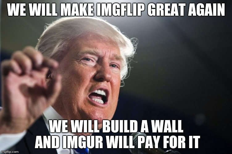 donald trump | WE WILL MAKE IMGFLIP GREAT AGAIN WE WILL BUILD A WALL AND IMGUR WILL PAY FOR IT | image tagged in donald trump | made w/ Imgflip meme maker