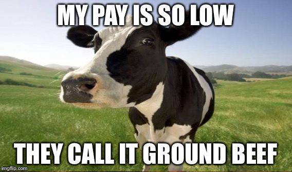 MY PAY IS SO LOW THEY CALL IT GROUND BEEF | made w/ Imgflip meme maker