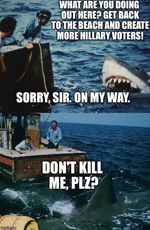 Hai Jaws | WHAT ARE YOU DOING OUT HERE? GET BACK TO THE BEACH AND CREATE MORE HILLARY VOTERS! DON'T KILL ME, PLZ? SORRY, SIR. ON MY WAY. | image tagged in hai jaws | made w/ Imgflip meme maker