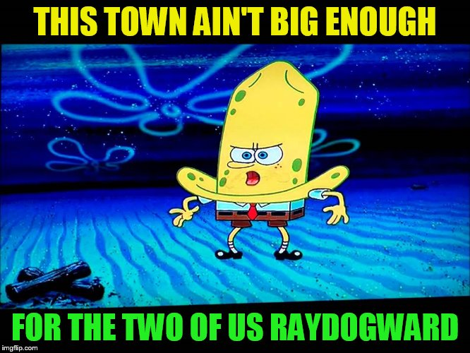 THIS TOWN AIN'T BIG ENOUGH FOR THE TWO OF US RAYDOGWARD | made w/ Imgflip meme maker