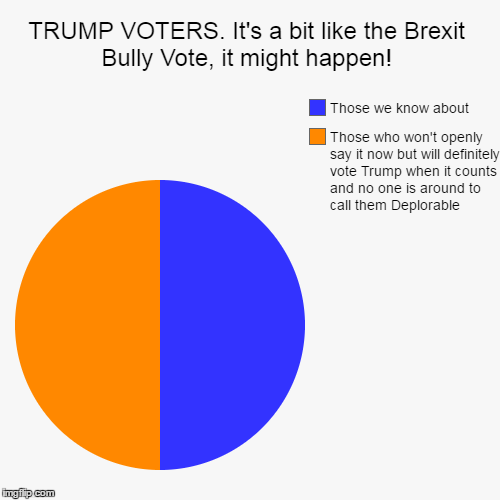 TRUMP. it could happen! | TRUMP VOTERS. It's a bit like the Brexit Bully Vote, it might happen! | Those who won't openly say it now but will definitely vote Trump whe | image tagged in funny,trump,hillary,clinton,donald trump,vote | made w/ Imgflip chart maker