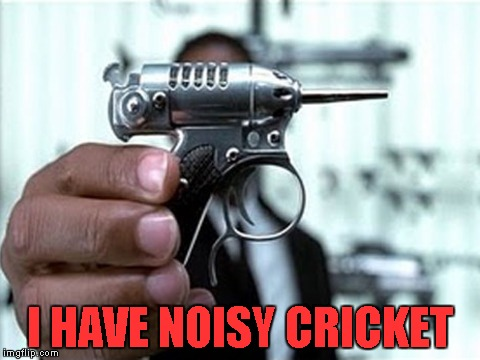 I HAVE NOISY CRICKET | made w/ Imgflip meme maker