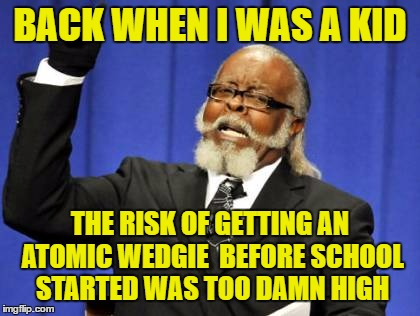 Too Damn High Meme | BACK WHEN I WAS A KID THE RISK OF GETTING AN ATOMIC WEDGIE  BEFORE SCHOOL STARTED WAS TOO DAMN HIGH | image tagged in memes,too damn high | made w/ Imgflip meme maker