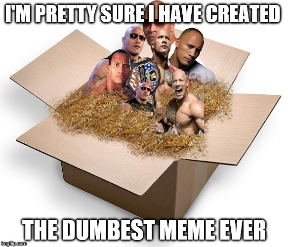 My daughter says I've made dumber ones.  | I'M PRETTY SURE I HAVE CREATED THE DUMBEST MEME EVER | image tagged in memes,the rock,a box | made w/ Imgflip meme maker