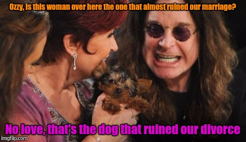 Dead Memes Week Selfish Ozzy |  Ozzy, is this woman over here the one that almost ruined our marriage? No love, that's the dog that ruined our divorce | image tagged in memes,selfish ozzy,dead memes week,marriage,divorce,ozzy osbourne | made w/ Imgflip meme maker
