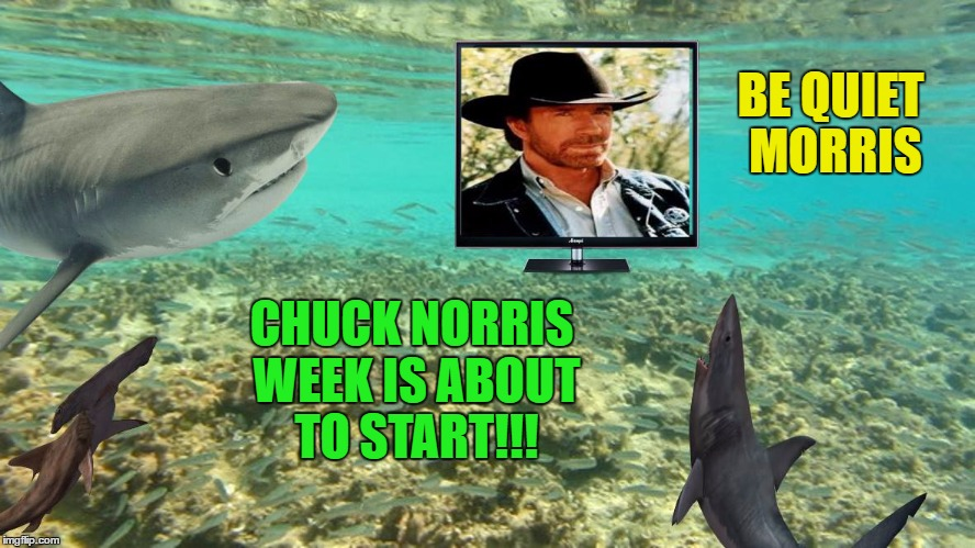 BE QUIET MORRIS CHUCK NORRIS WEEK IS ABOUT TO START!!! | made w/ Imgflip meme maker