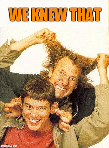 DUMB and dumber | WE KNEW THAT | image tagged in dumb and dumber | made w/ Imgflip meme maker
