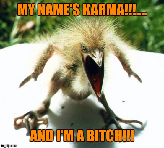 Unpleasant Bird | MY NAME'S KARMA!!!.... AND I'M A B**CH!!! | image tagged in unpleasant bird | made w/ Imgflip meme maker