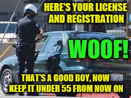 HERE'S YOUR LICENSE AND REGISTRATION THAT'S A GOOD BOY, NOW KEEP IT UNDER 55 FROM NOW ON WOOF! | made w/ Imgflip meme maker
