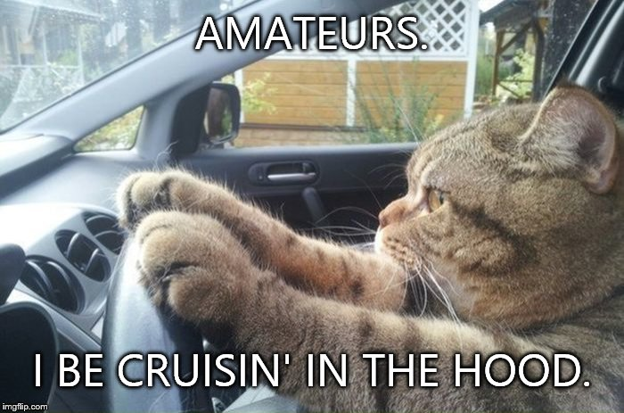 AMATEURS. I BE CRUISIN' IN THE HOOD. | made w/ Imgflip meme maker