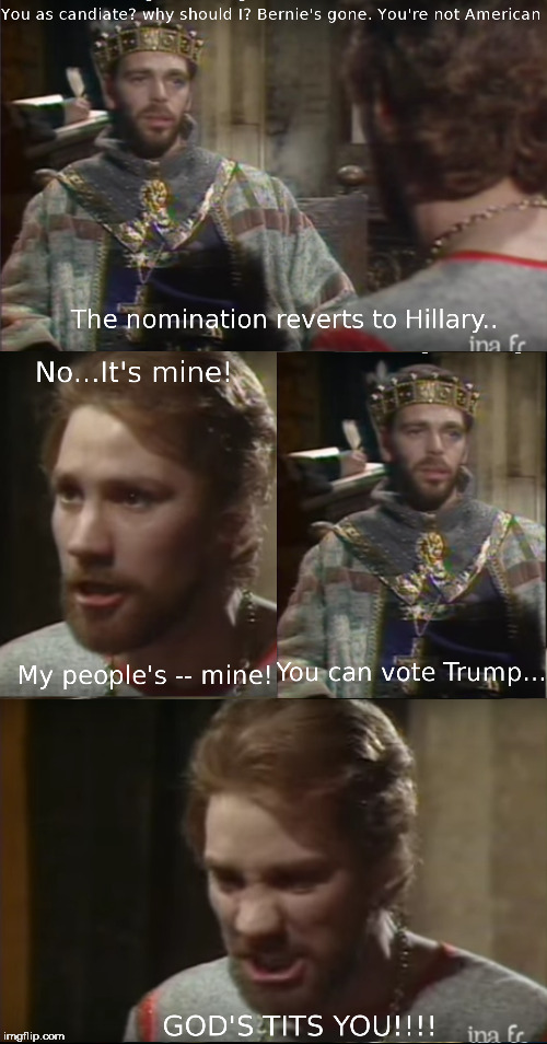 A sad commentary on the lack of viable voting options... | image tagged in election 2016,prince john | made w/ Imgflip meme maker
