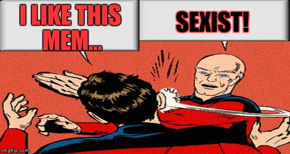 picard slap | I LIKE THIS MEM... SEXIST! | image tagged in picard slap | made w/ Imgflip meme maker