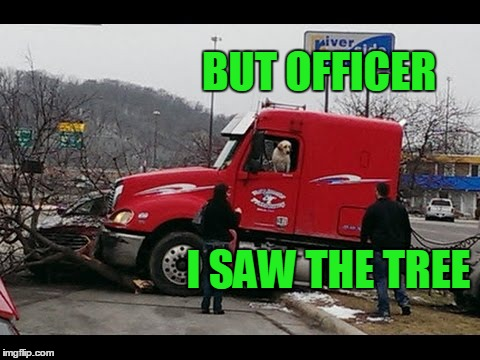 I SAW THE TREE BUT OFFICER | made w/ Imgflip meme maker