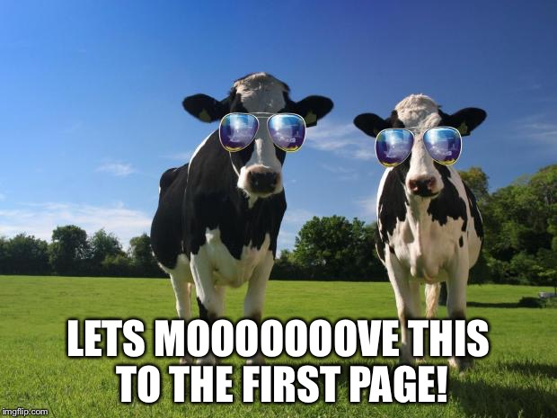 LETS MOOOOOOOVE THIS TO THE FIRST PAGE! | made w/ Imgflip meme maker