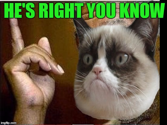 Grumpy Cat He's Right You Know | HE'S RIGHT YOU KNOW | image tagged in grumpy cat he's right you know | made w/ Imgflip meme maker