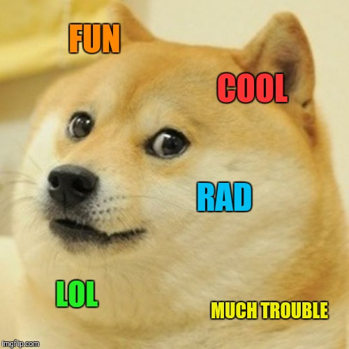 Doge Meme | FUN COOL RAD LOL MUCH TROUBLE | image tagged in memes,doge | made w/ Imgflip meme maker