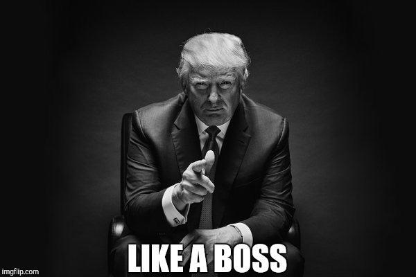 Image result for Trump like a boss