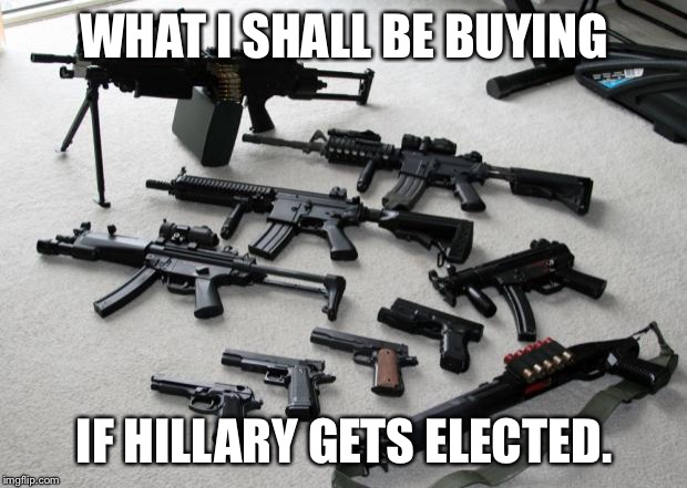 guns | WHAT I SHALL BE BUYING IF HILLARY GETS ELECTED. | image tagged in guns | made w/ Imgflip meme maker