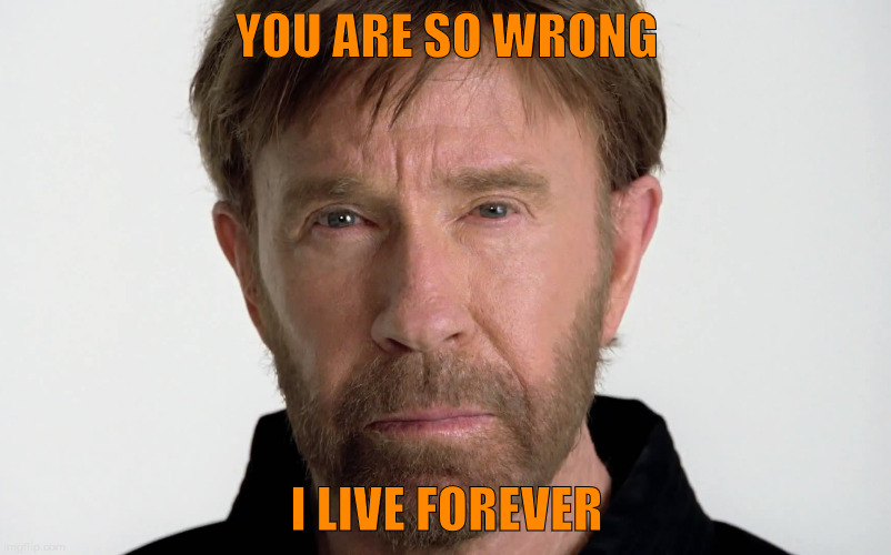 YOU ARE SO WRONG I LIVE FOREVER | image tagged in chuck norris,memes | made w/ Imgflip meme maker
