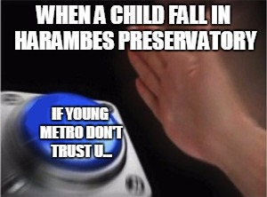 Blank Nut Button Meme | WHEN A CHILD FALL IN HARAMBES PRESERVATORY IF YOUNG METRO DON'T TRUST U... | image tagged in blank nut button | made w/ Imgflip meme maker