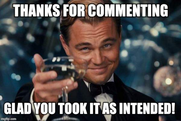 Leonardo Dicaprio Cheers Meme | THANKS FOR COMMENTING GLAD YOU TOOK IT AS INTENDED! | image tagged in memes,leonardo dicaprio cheers | made w/ Imgflip meme maker