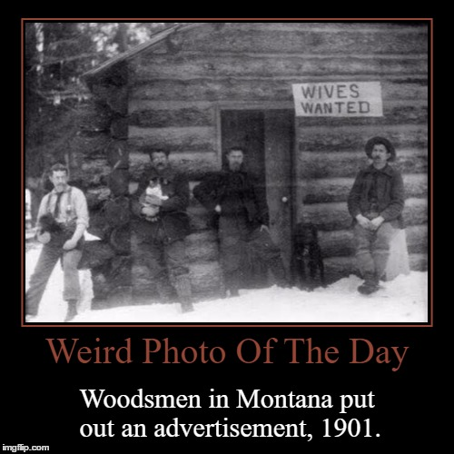 Wives Wanted | Weird Photo Of The Day | Woodsmen in Montana put out an advertisement, 1901. | image tagged in funny,demotivationals,weird,photo of the day,montana,advertisement | made w/ Imgflip demotivational maker