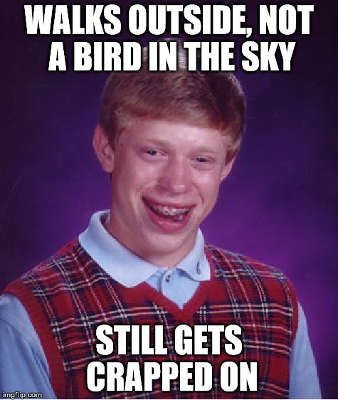 Bad Luck Brian Meme | WALKS OUTSIDE, NOT A BIRD IN THE SKY STILL GETS CRAPPED ON | image tagged in memes,bad luck brian | made w/ Imgflip meme maker