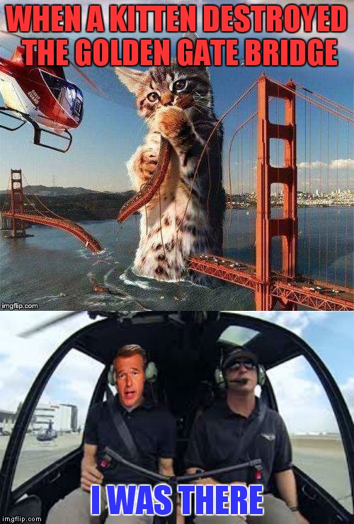 Thank you reallyitsjohn for showing me the top pic and inspiring this meme. | WHEN A KITTEN DESTROYED THE GOLDEN GATE BRIDGE I WAS THERE | image tagged in jying,reallyitsjohn,collaboration,memestrocity,brian williams was there | made w/ Imgflip meme maker