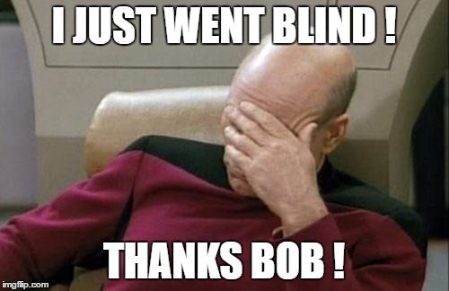 Captain Picard Facepalm Meme | I JUST WENT BLIND ! THANKS BOB ! | image tagged in memes,captain picard facepalm | made w/ Imgflip meme maker