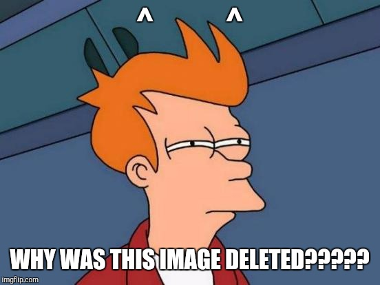 Futurama Fry Meme | ^            ^ WHY WAS THIS IMAGE DELETED????? | image tagged in memes,futurama fry | made w/ Imgflip meme maker