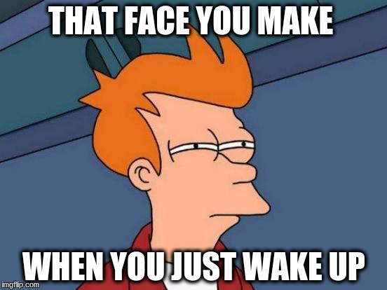 Futurama Fry |  THAT FACE YOU MAKE; WHEN YOU JUST WAKE UP | image tagged in memes,futurama fry | made w/ Imgflip meme maker