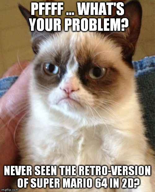 Grumpy Cat Meme | PFFFF ... WHAT'S YOUR PROBLEM? NEVER SEEN THE RETRO-VERSION OF SUPER MARIO 64 IN 2D? | image tagged in memes,grumpy cat | made w/ Imgflip meme maker