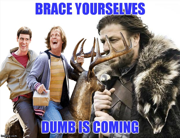 A whole weekend of dumb.... | BRACE YOURSELVES DUMB IS COMING | image tagged in dumb and dumber,memes,weekend | made w/ Imgflip meme maker