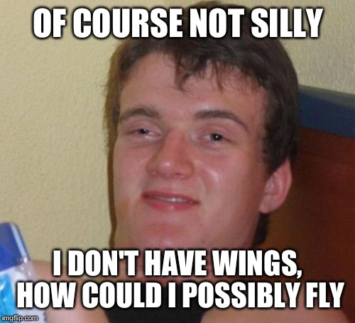 10 Guy Meme | OF COURSE NOT SILLY I DON'T HAVE WINGS, HOW COULD I POSSIBLY FLY | image tagged in memes,10 guy | made w/ Imgflip meme maker