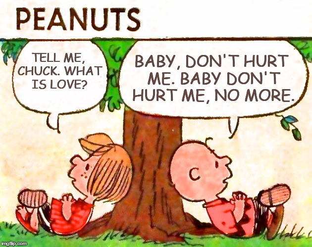 What is Love? | TELL ME, CHUCK.WHAT IS LOVE? BABY, DON'T HURT ME. BABY DON'T HURT ME, NO MORE. | image tagged in peanuts charlie brown peppermint patty,memes,puns | made w/ Imgflip meme maker