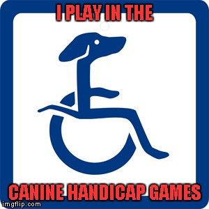 I PLAY IN THE CANINE HANDICAP GAMES | made w/ Imgflip meme maker