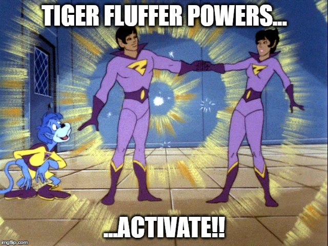Tiger Fluffer Twins | TIGER FLUFFER POWERS... ...ACTIVATE!! | image tagged in tiger,pga,golf,pga tour,tiger woods,wonder twins | made w/ Imgflip meme maker
