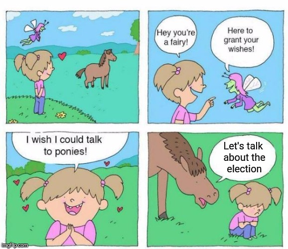 Talk to Ponies | Let's talk about the election | image tagged in talk to ponies | made w/ Imgflip meme maker