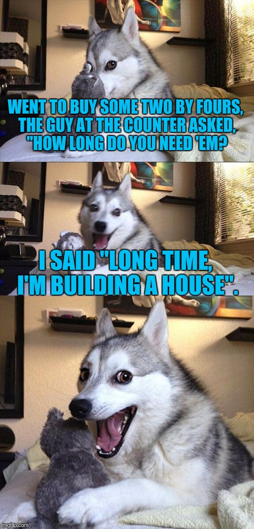 "Dumb enough? Too dumb? It is dumb meme weekend. | WENT TO BUY SOME TWO BY FOURS, THE GUY AT THE COUNTER ASKED, ""HOW LONG DO YOU NEED 'EM? I SAID ""LONG TIME, I'M BUILDING A HOUSE"". 