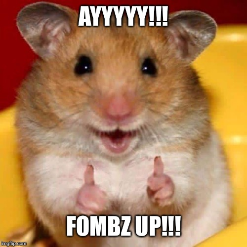 Thumbs up hamster  | AYYYYY!!! FOMBZ UP!!! | image tagged in thumbs up hamster | made w/ Imgflip meme maker
