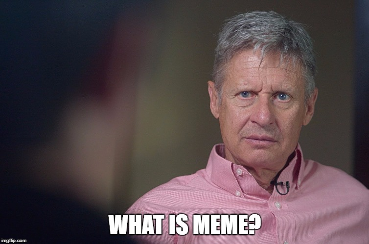 Gary Johnson Doesn't Get It | WHAT IS MEME? | image tagged in gary johnson doesn't get it | made w/ Imgflip meme maker